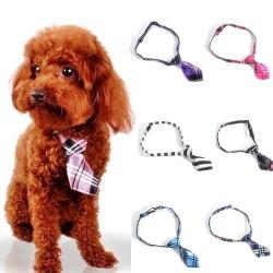 Cravate satinée pour chien